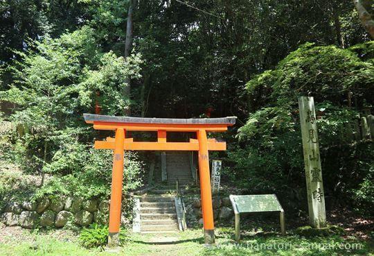 等彌神社から鳥見山霊畤への道