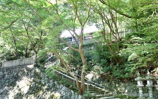 葛木坐火雷神社の境内