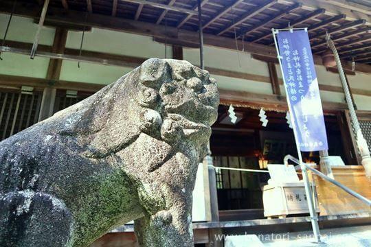 葛木坐火雷神社の狛犬