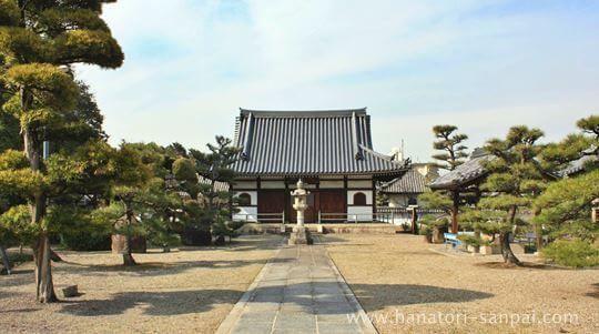 大阪の野中寺