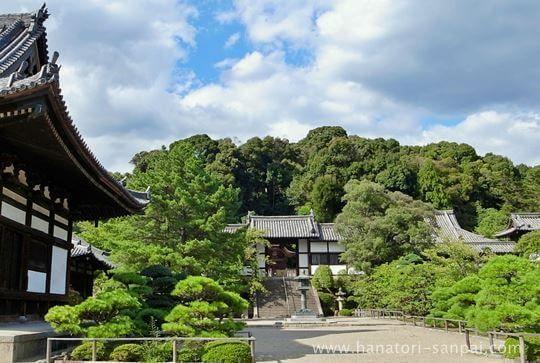 大阪の叡福寺