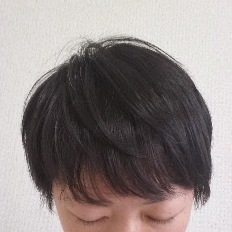 f:id:hanauta45:20150524170936j:plain