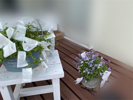 f:id:hanautabiyori:20210509224217j:image