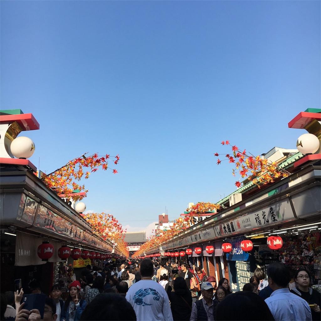 f:id:hanayasu:20171107113045j:image