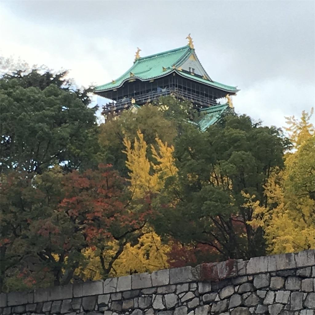 f:id:hanayasu:20171119205630j:image