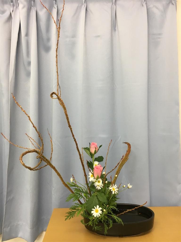 f:id:hanayasu:20171203090639j:image