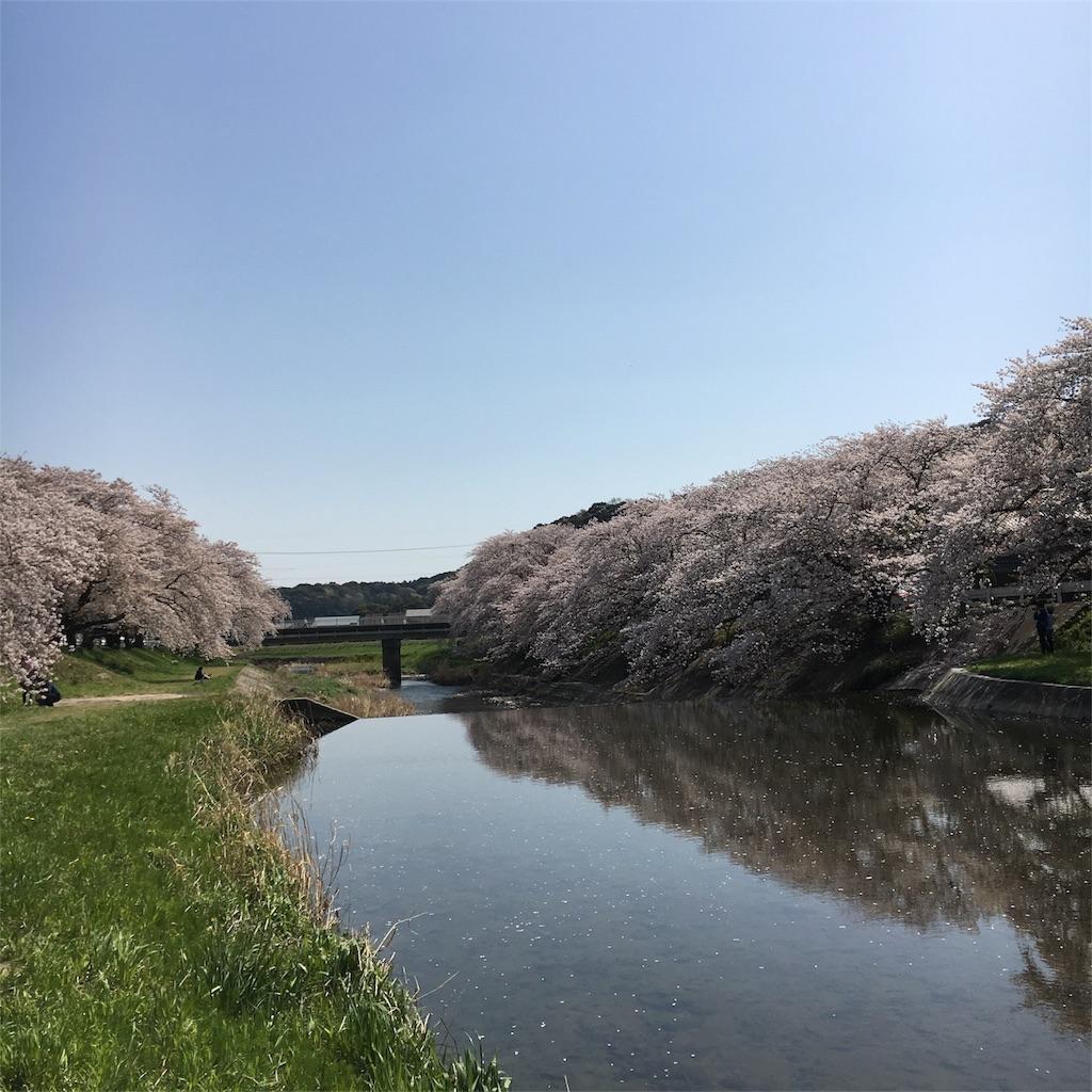 f:id:hanayasu:20180331070352j:image
