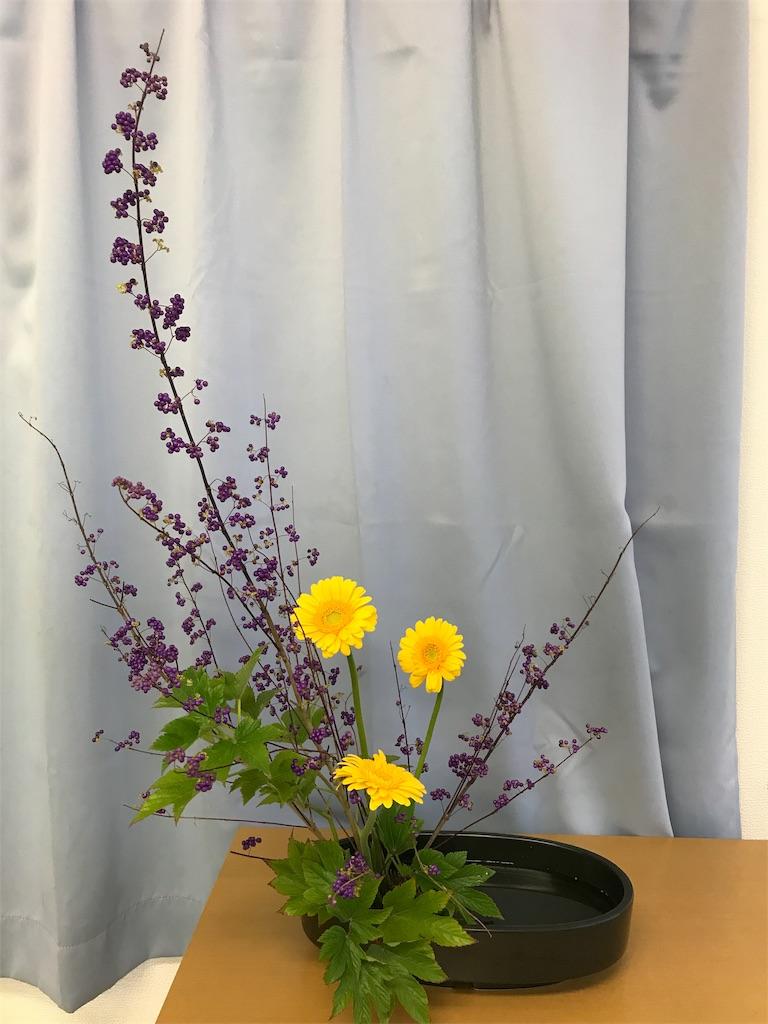 f:id:hanayasu:20181020122414j:image