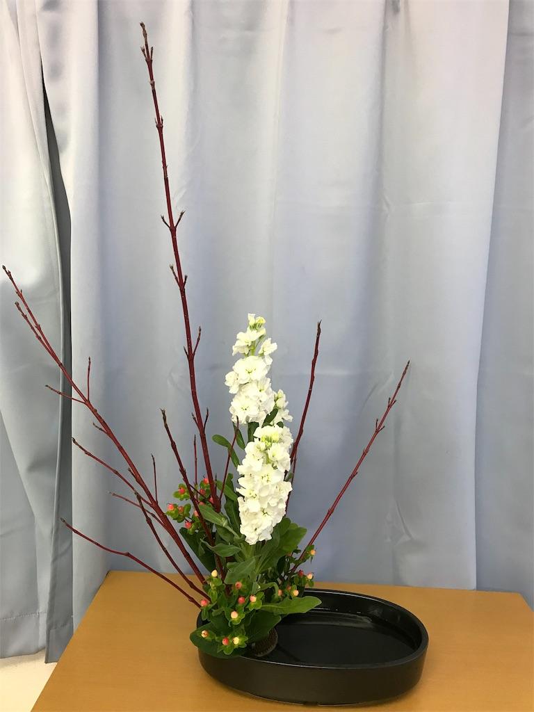 f:id:hanayasu:20181117143250j:image