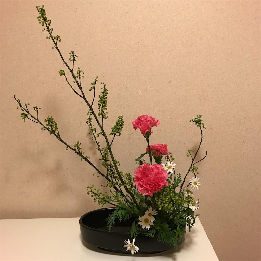 f:id:hanayasu:20181201203858j:image