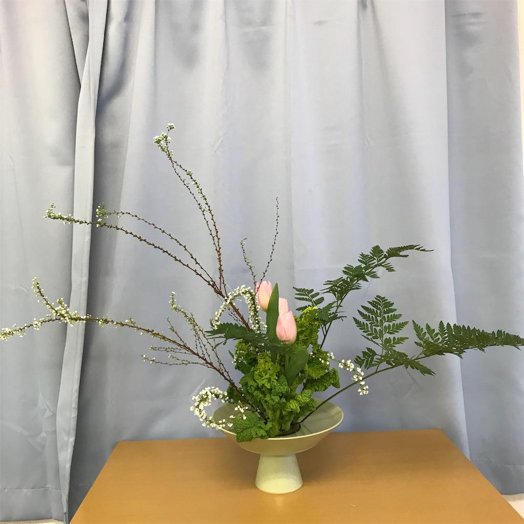 f:id:hanayasu:20190202122813j:image