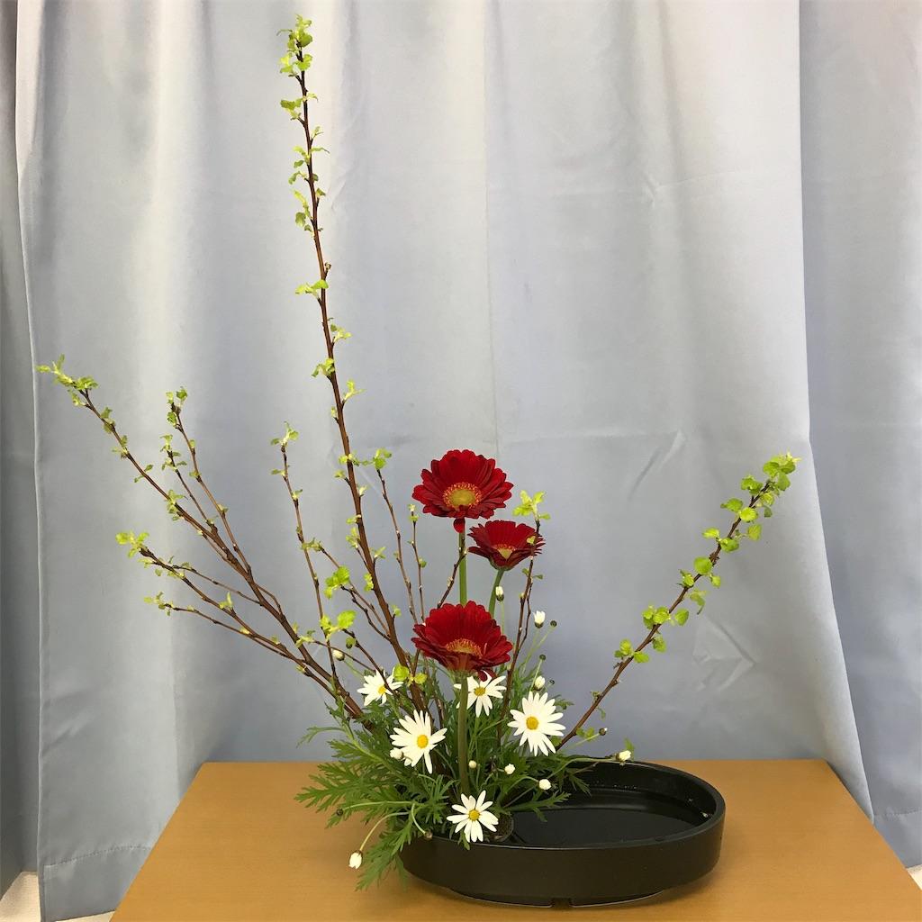 f:id:hanayasu:20190216123942j:image