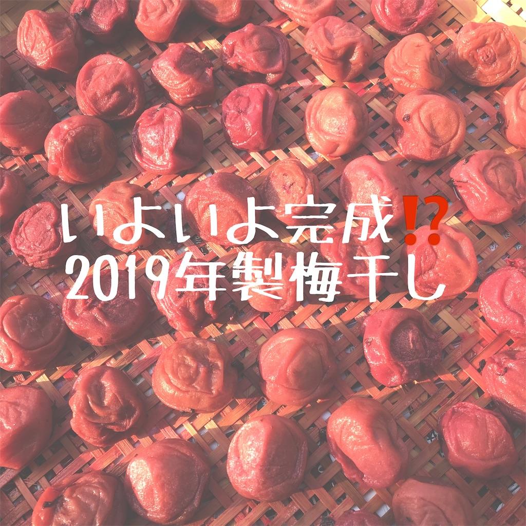 f:id:hanayasu:20190731100417j:image