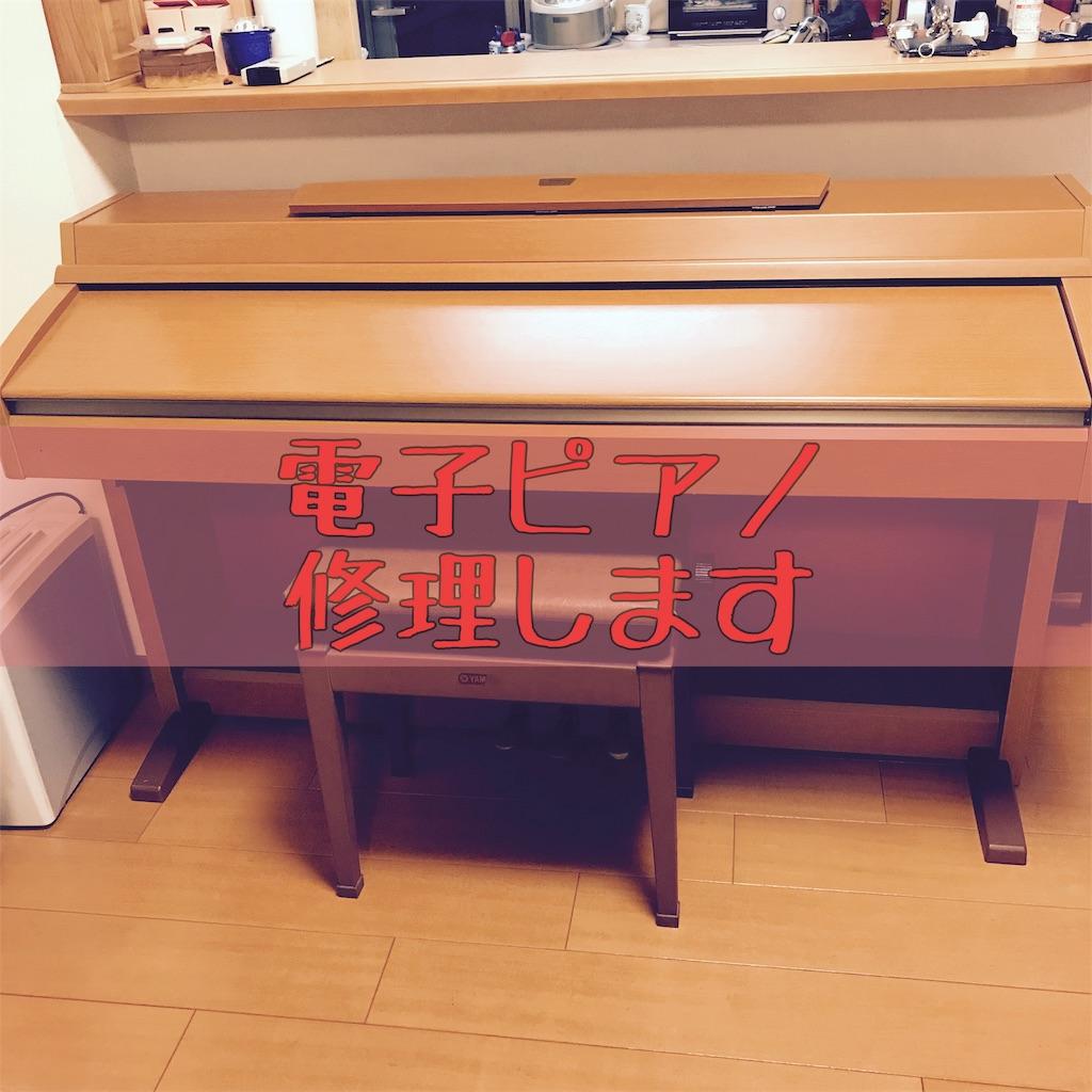f:id:hanayasu:20191010151853j:image