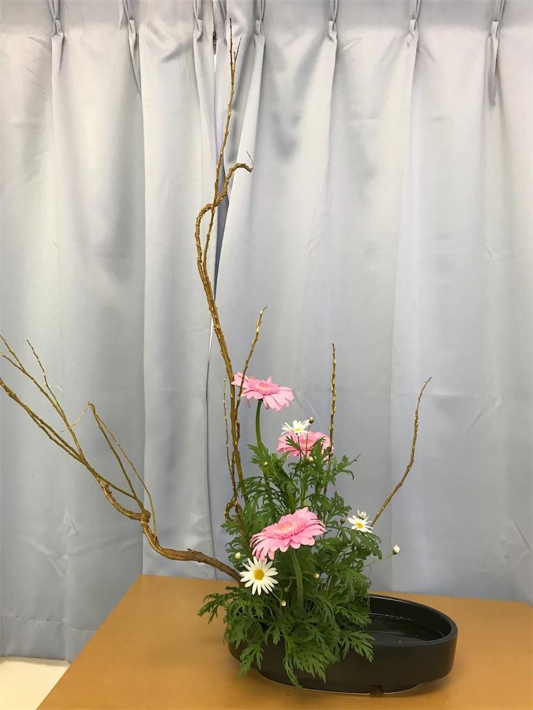 f:id:hanayasu:20191102124102j:image