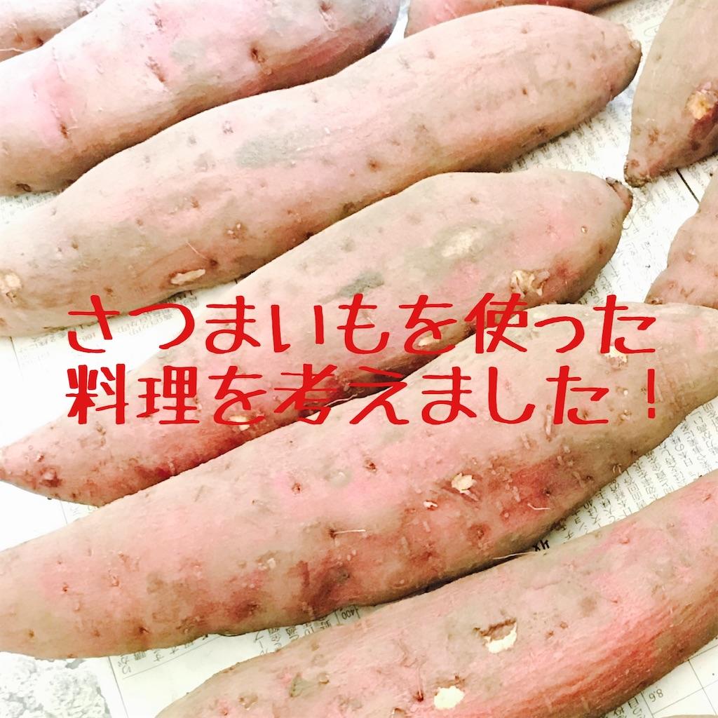 f:id:hanayasu:20191114231946j:image