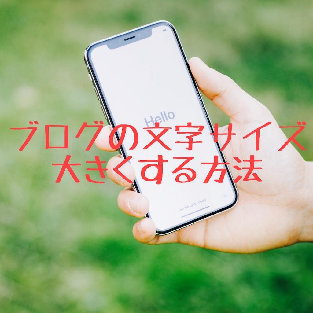 f:id:hanayasu:20191121103843j:image