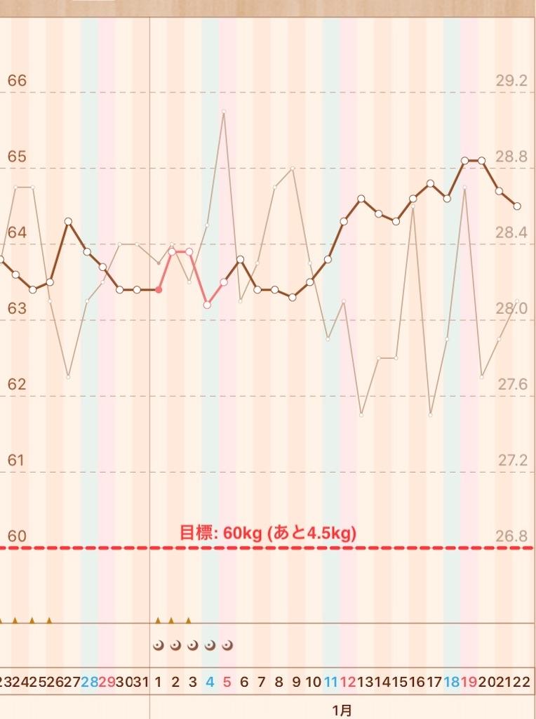 f:id:hanayasu:20200122064218j:image