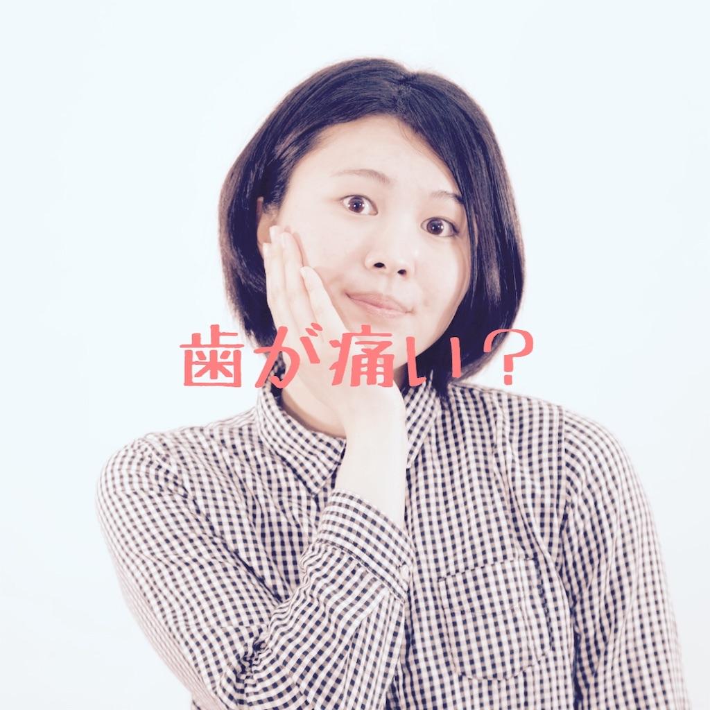 f:id:hanayasu:20200219182145j:image