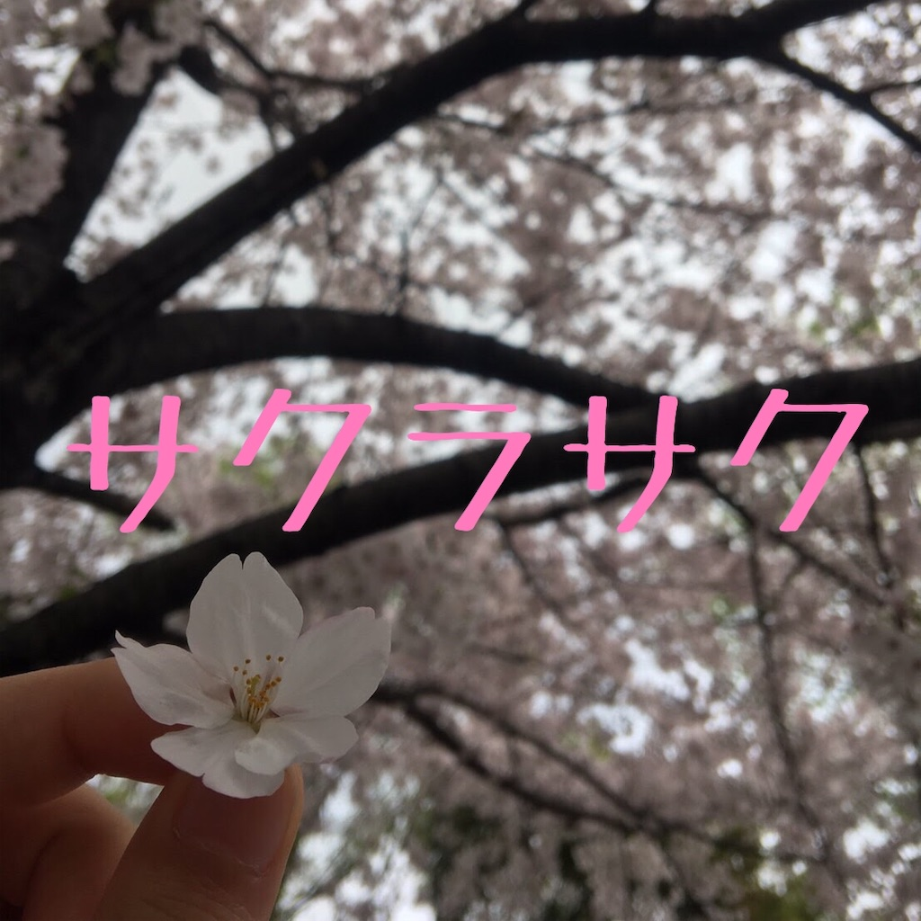 f:id:hanayasu:20200311145007j:image