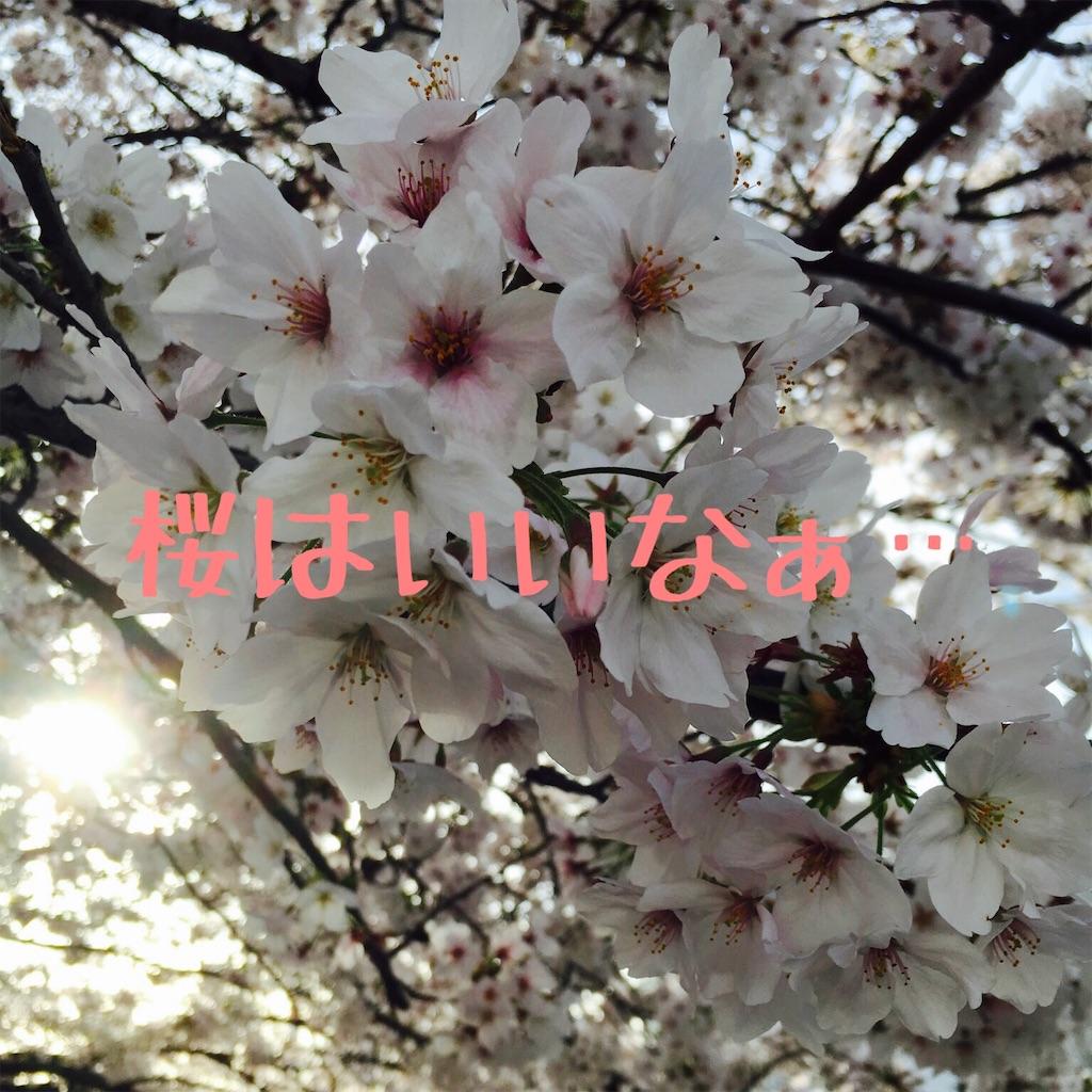 f:id:hanayasu:20200401081325j:image