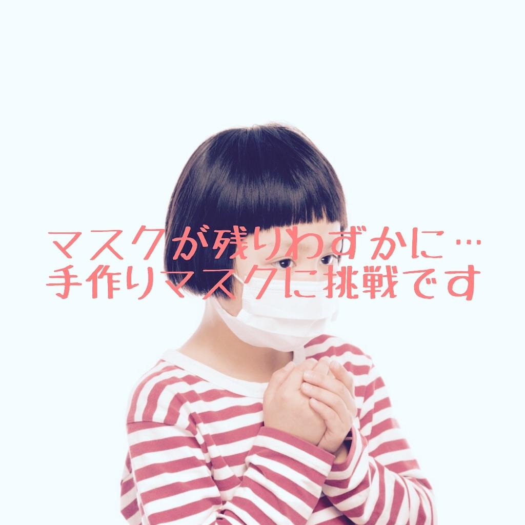 f:id:hanayasu:20200414134610j:image
