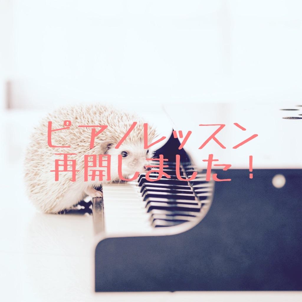 f:id:hanayasu:20200416224250j:image