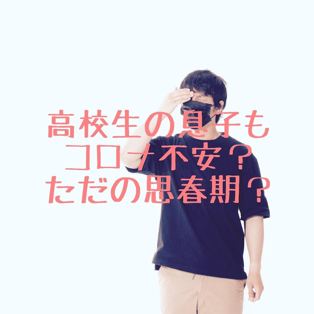 f:id:hanayasu:20200504104028j:image