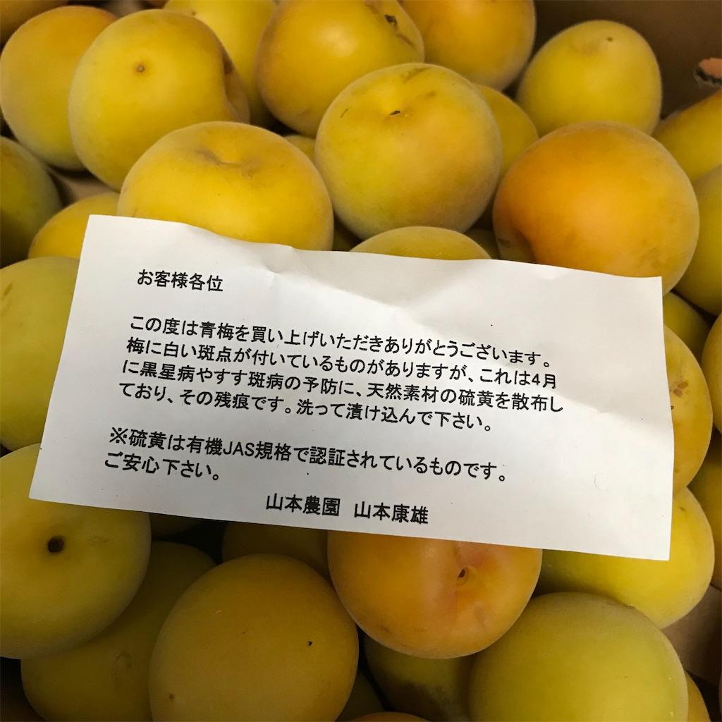 f:id:hanayasu:20200624175737j:image
