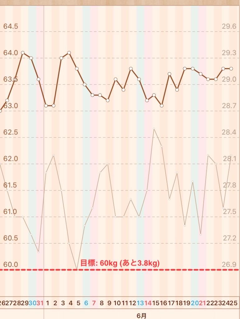 f:id:hanayasu:20200625100243j:image