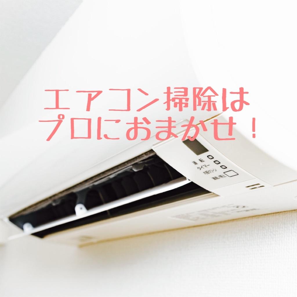 f:id:hanayasu:20200803122057j:image