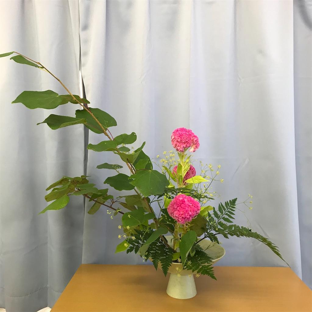 f:id:hanayasu:20200905124717j:image