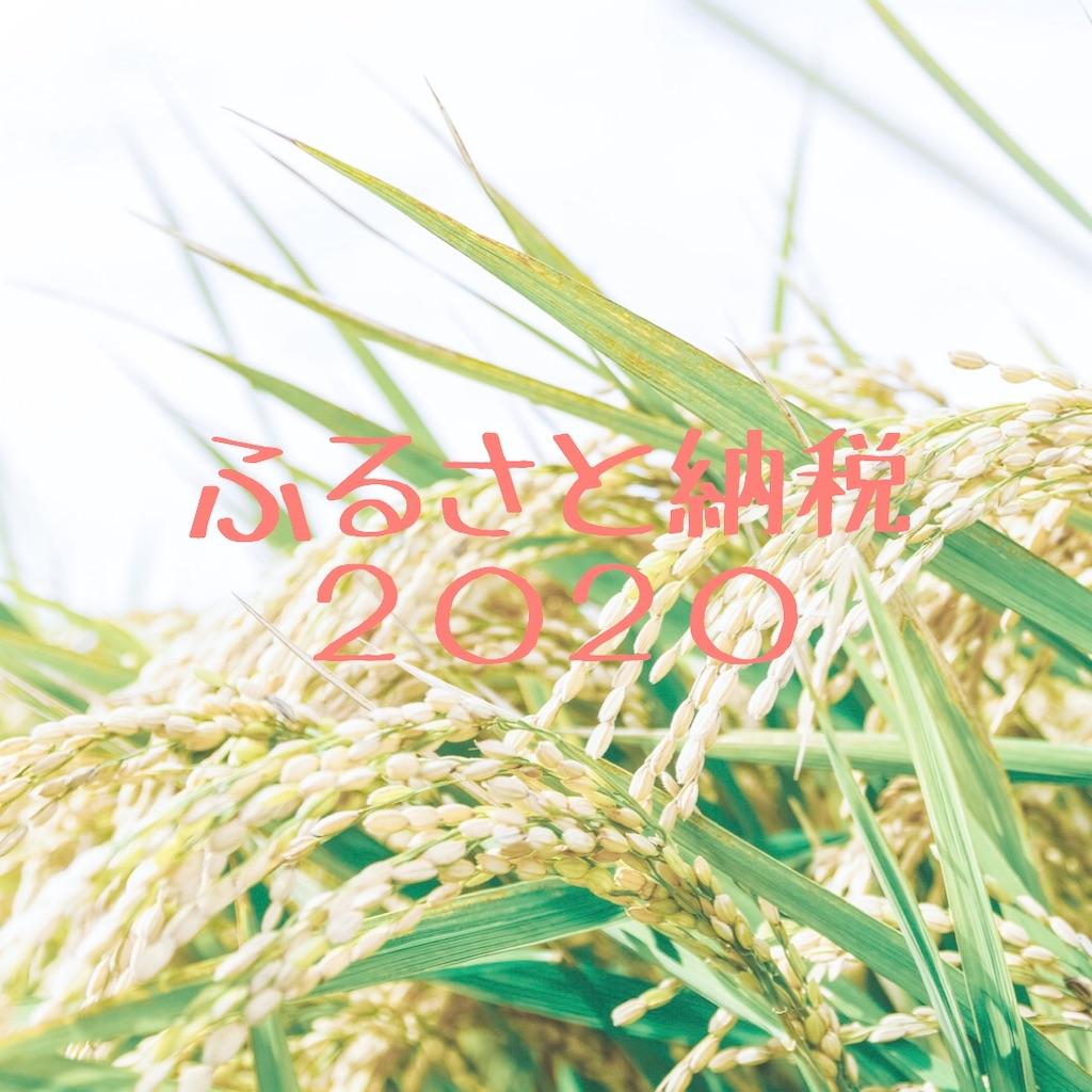 f:id:hanayasu:20200914093045j:image