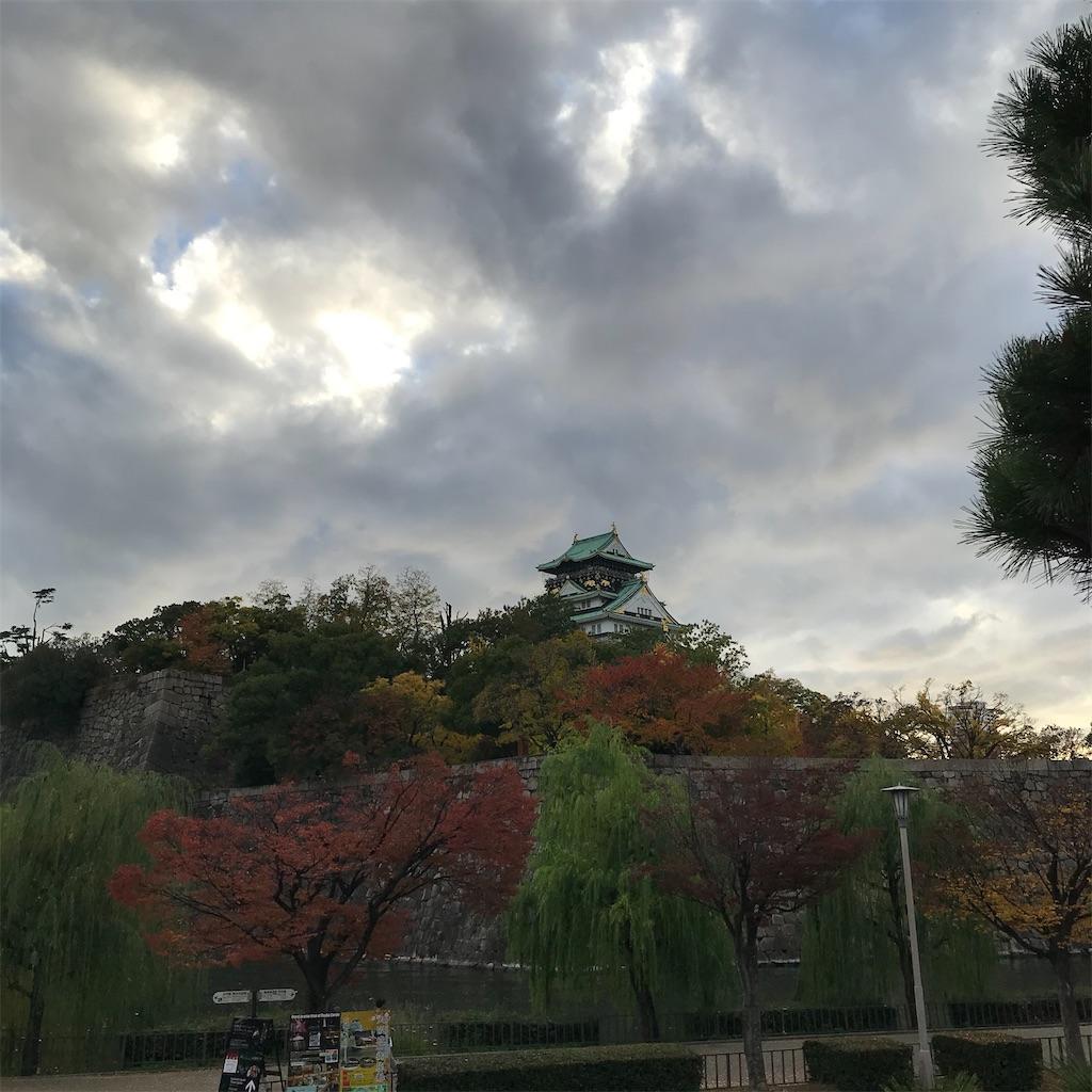 f:id:hanayasu:20201120101012j:image
