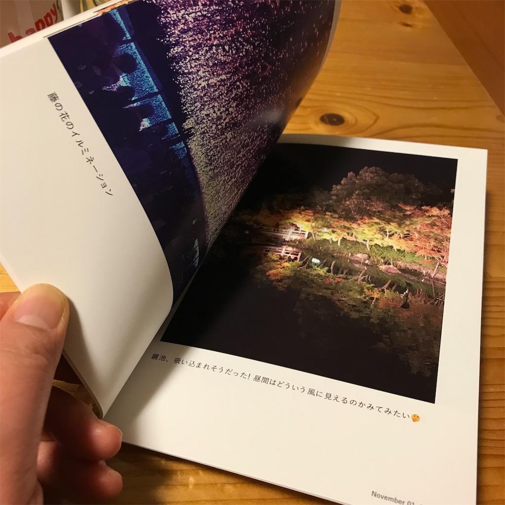 f:id:hanayasu:20201208102426j:image