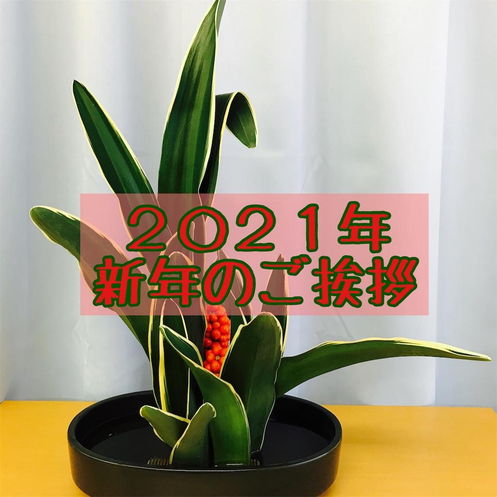 f:id:hanayasu:20210107141645j:image