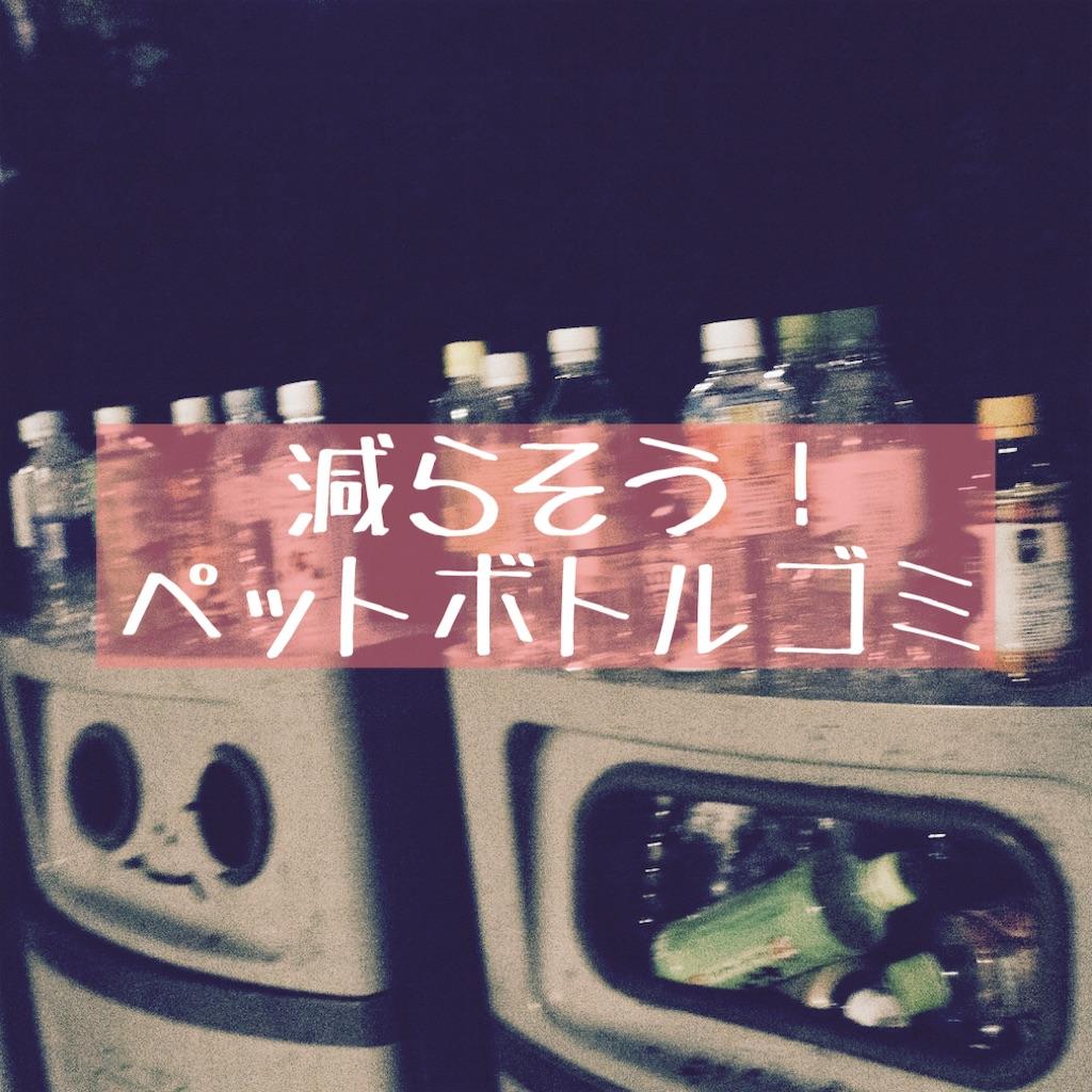 f:id:hanayasu:20210111133428j:image