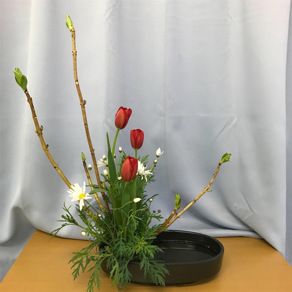 f:id:hanayasu:20210116222558j:image