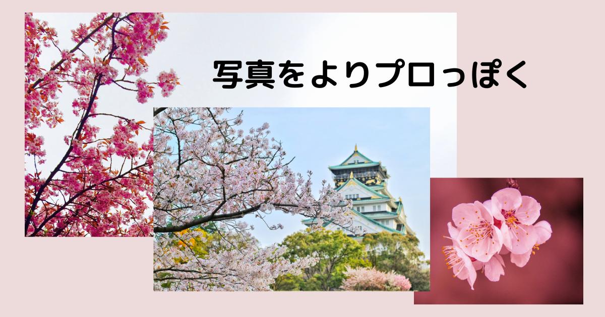 f:id:hanayasu:20210325124630p:plain