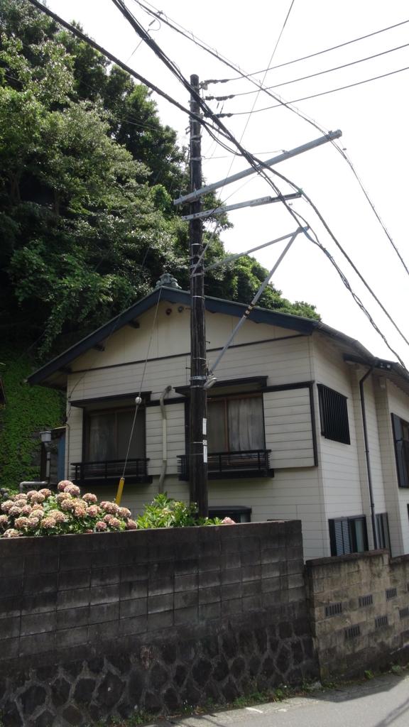 f:id:hanazukinokita:20180703122041j:plain