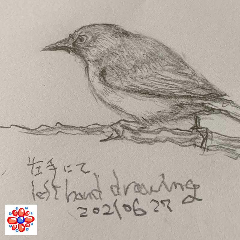 左手で練習した鳥の絵