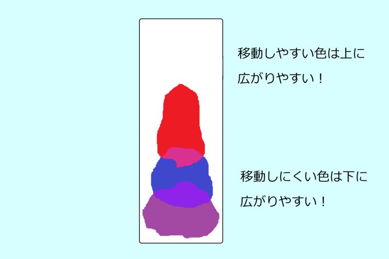 f:id:handai-carp:20130819120335p:image:w340