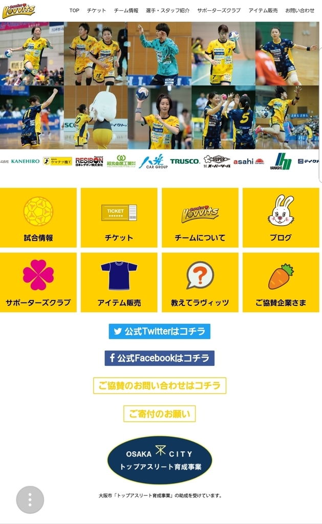 f:id:handball-jp2019:20190212125445j:plain