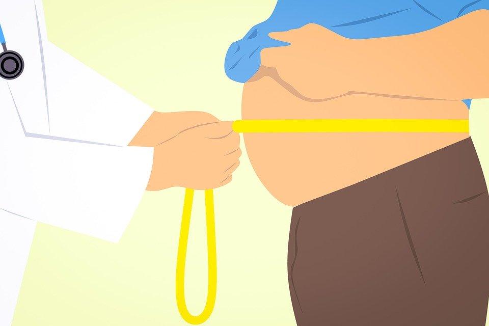 脂肪の画像