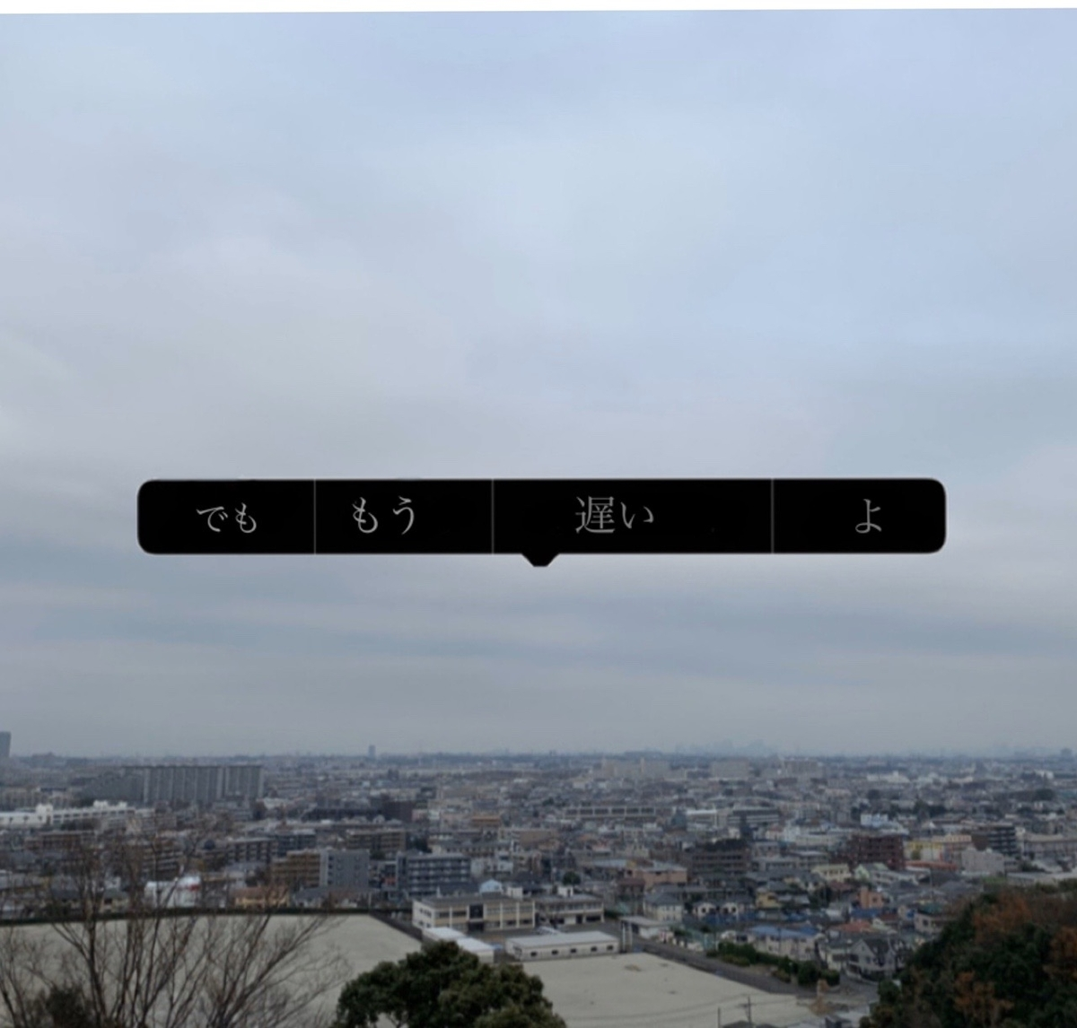 f:id:hanegarasu:20191221174241j:plain