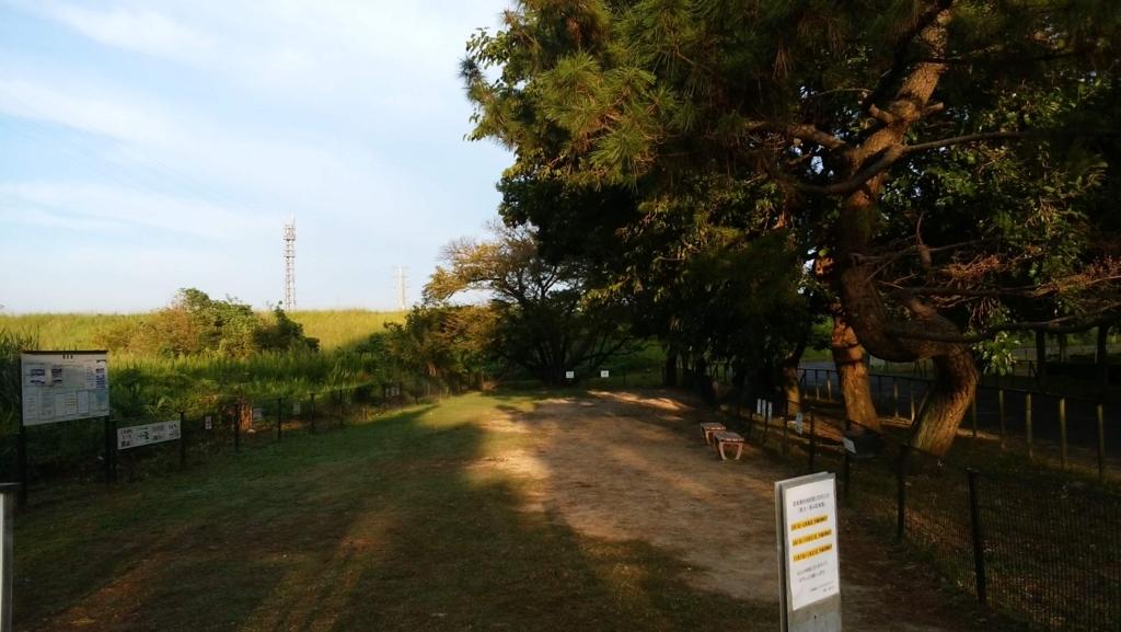 庄内緑地公園:ドッグラン3