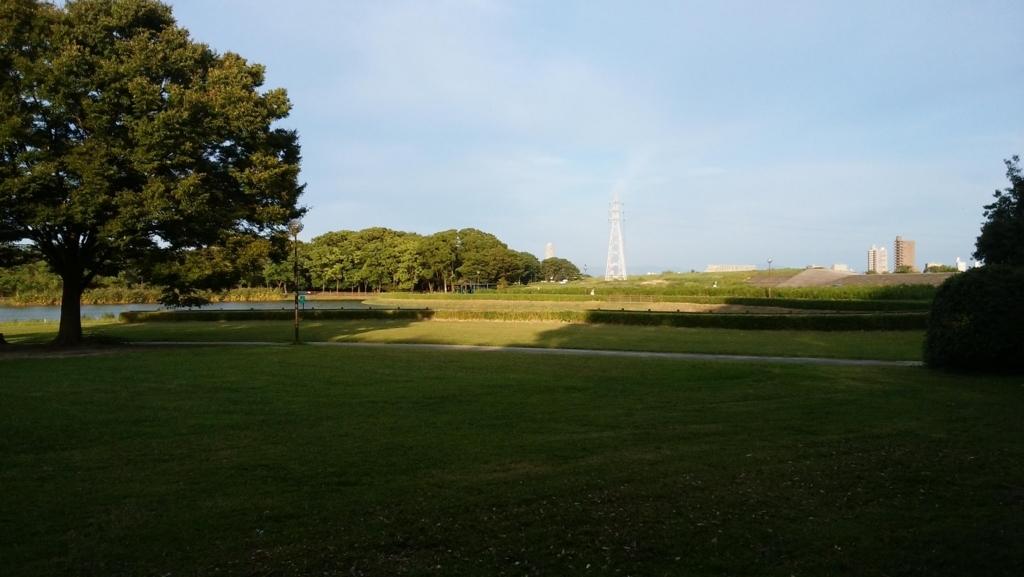 庄内緑地公園:5