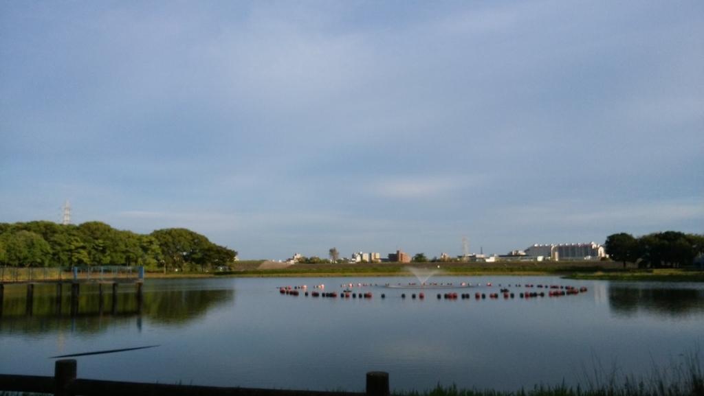 庄内緑地公園:9