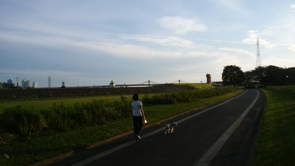 庄内緑地公園:10