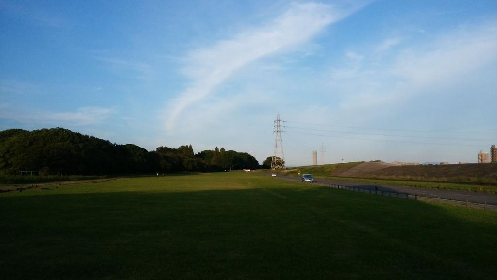 庄内緑地公園:12